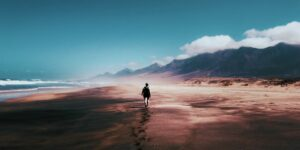 Foto von Tom Swinnen von Pexels